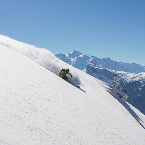 Skier dans la poudreuse