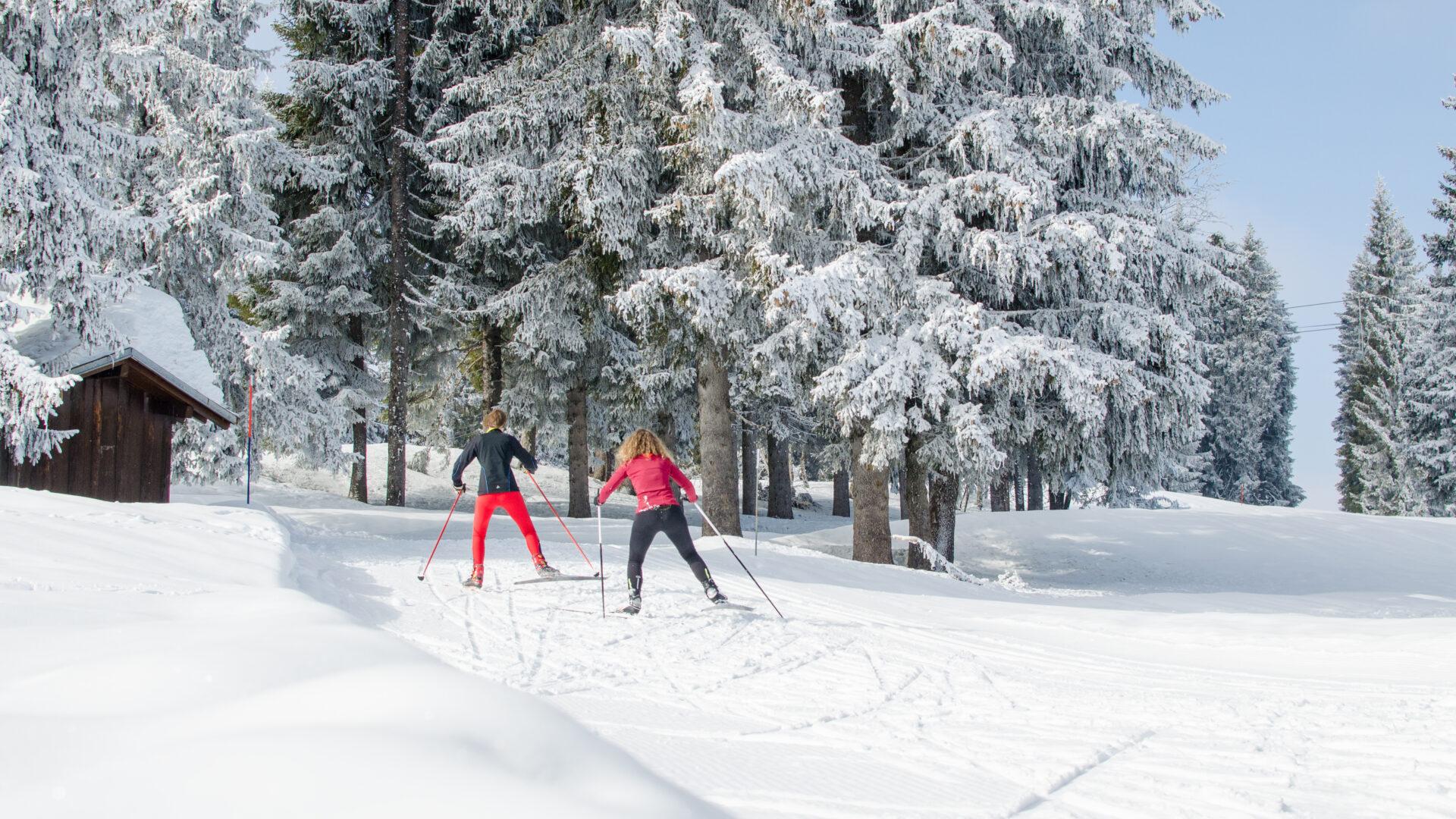 Deux personnes faisant du ski de fond avec chalet et sapins enneigés