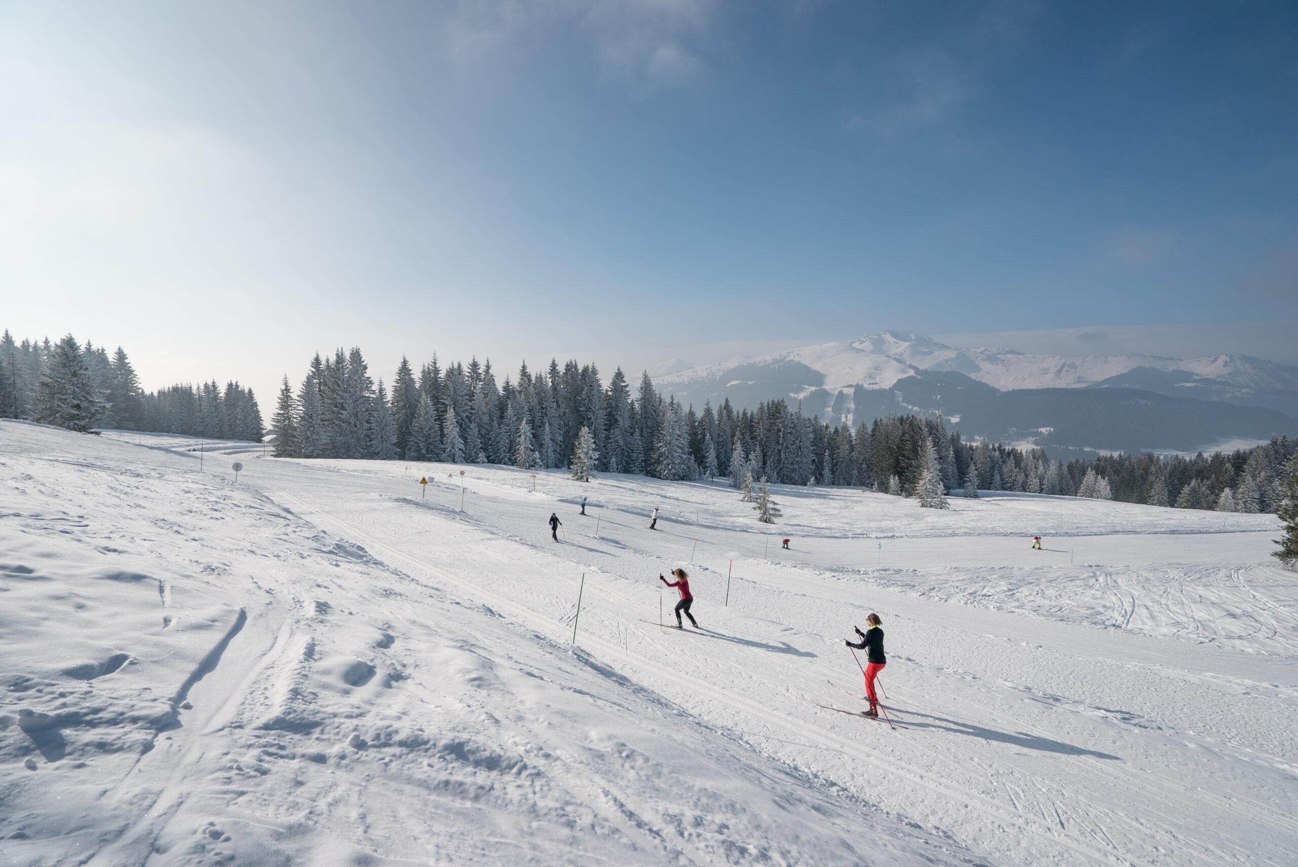 Personnes faisant du ski de fond avec ciel bleu