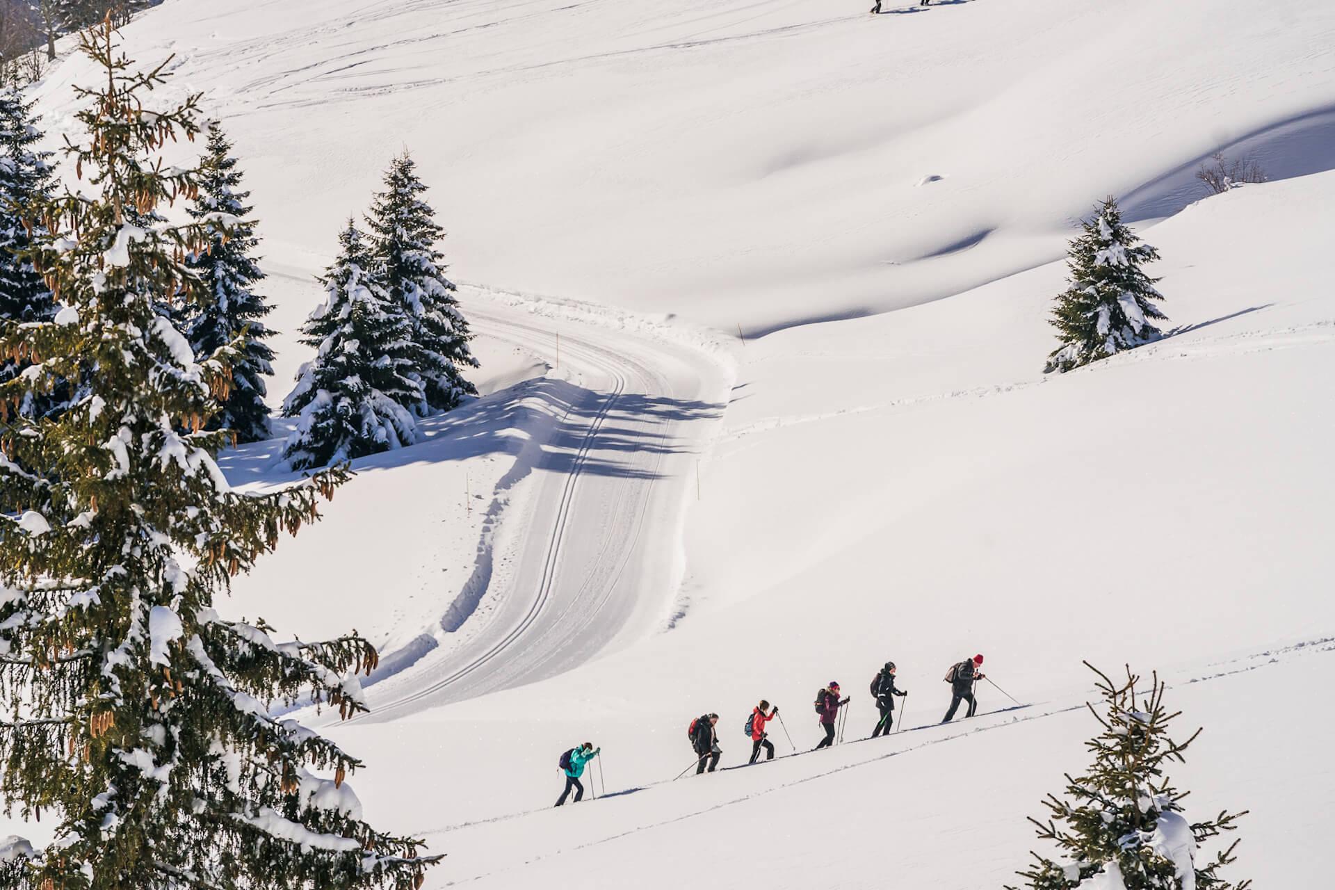Personnes faisant du ski de randonnée à côté d'une piste