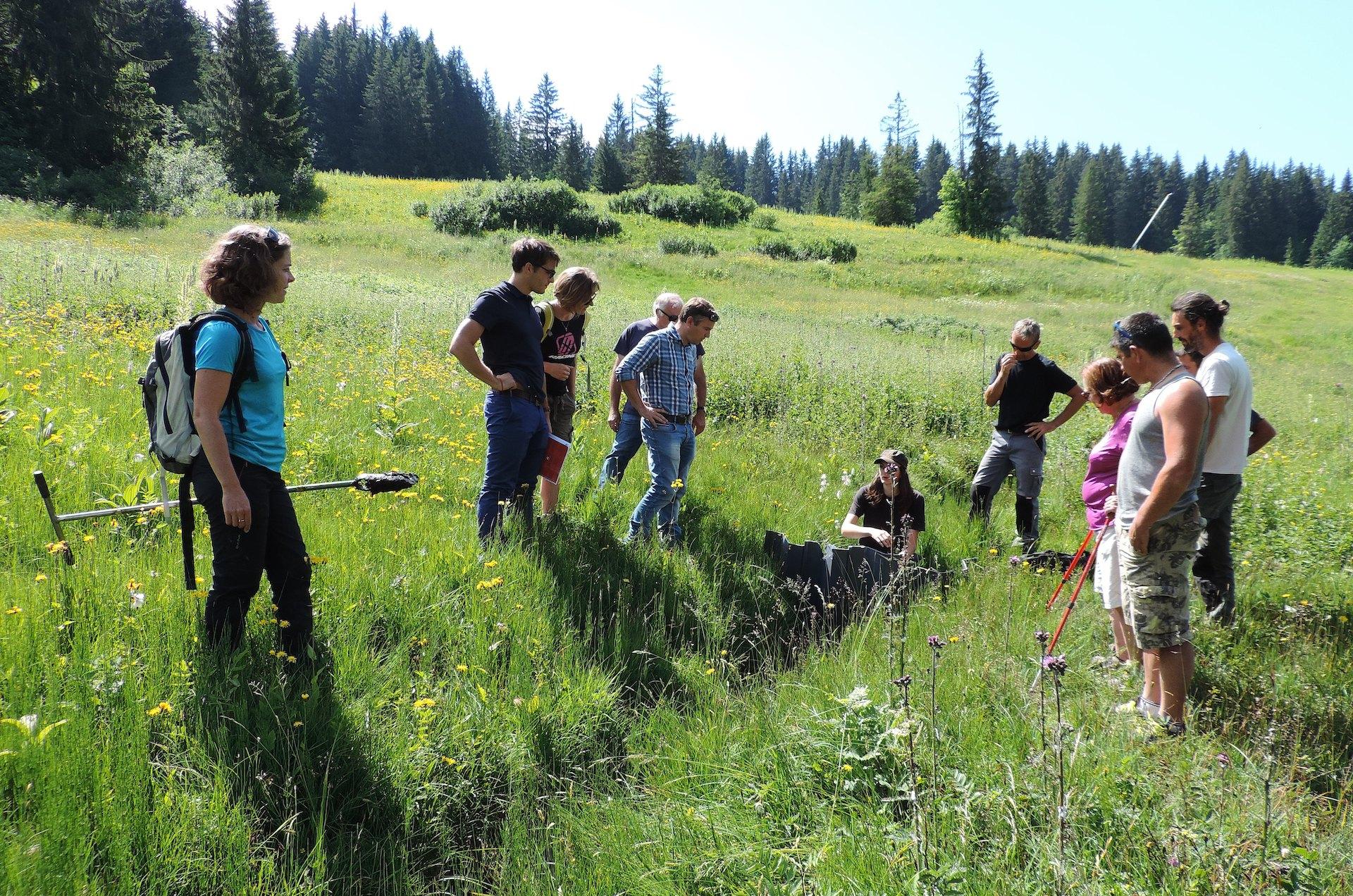 Groupe écoutant une femme donner des explications sur l'environnement en été