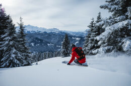 Skier in powder snow with mountain and fir trees