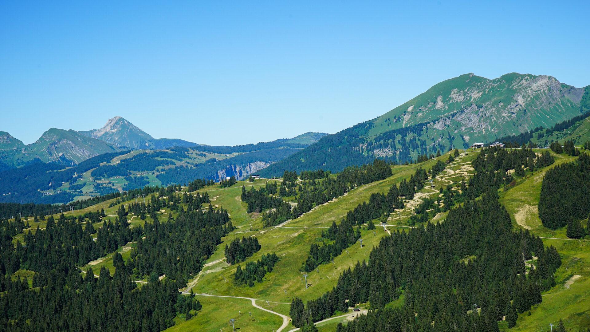 Paysage montagne en été