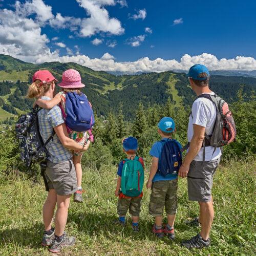 Famille admirant le paysage et les montagnes en été