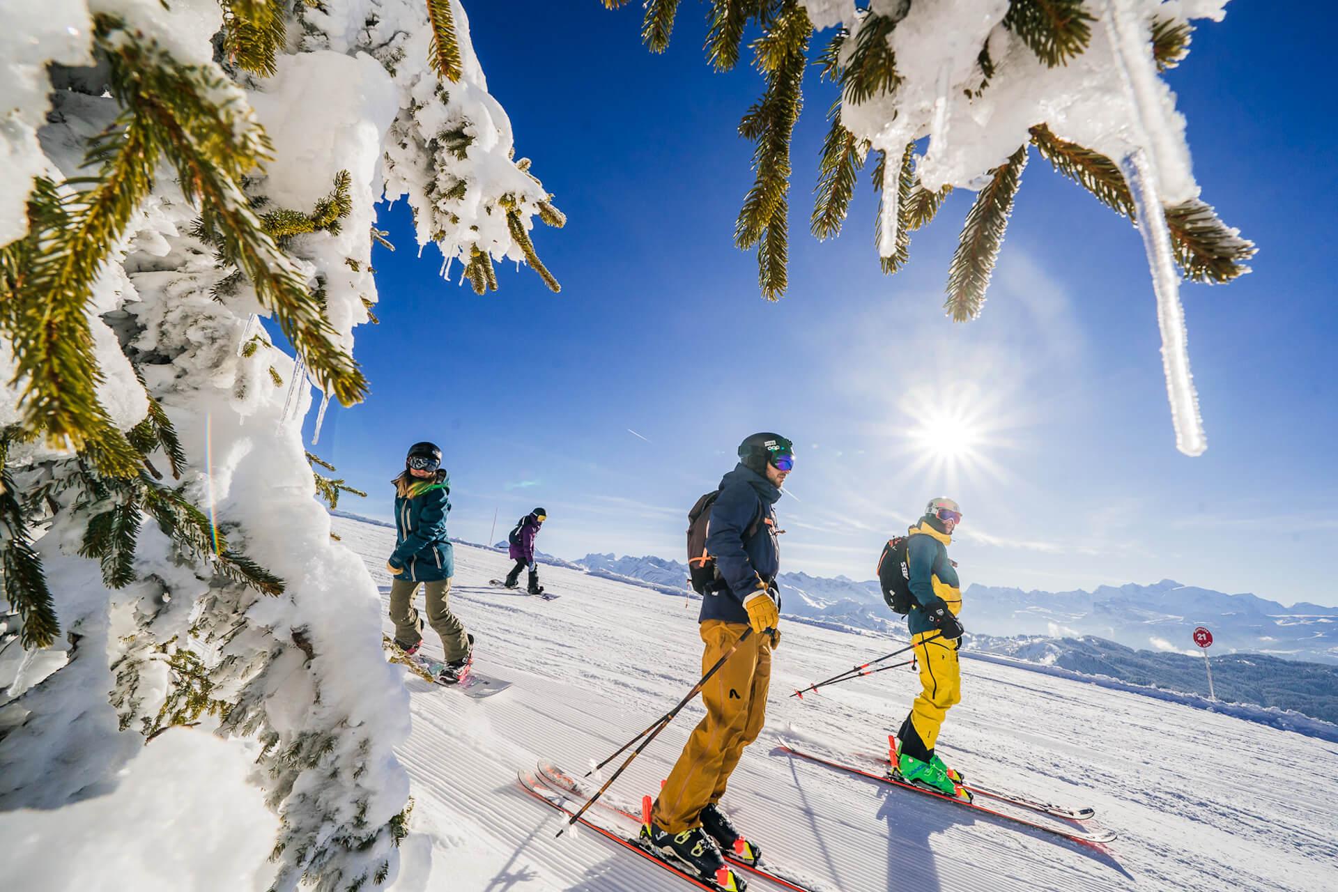 Ski - Sports d'hiver
