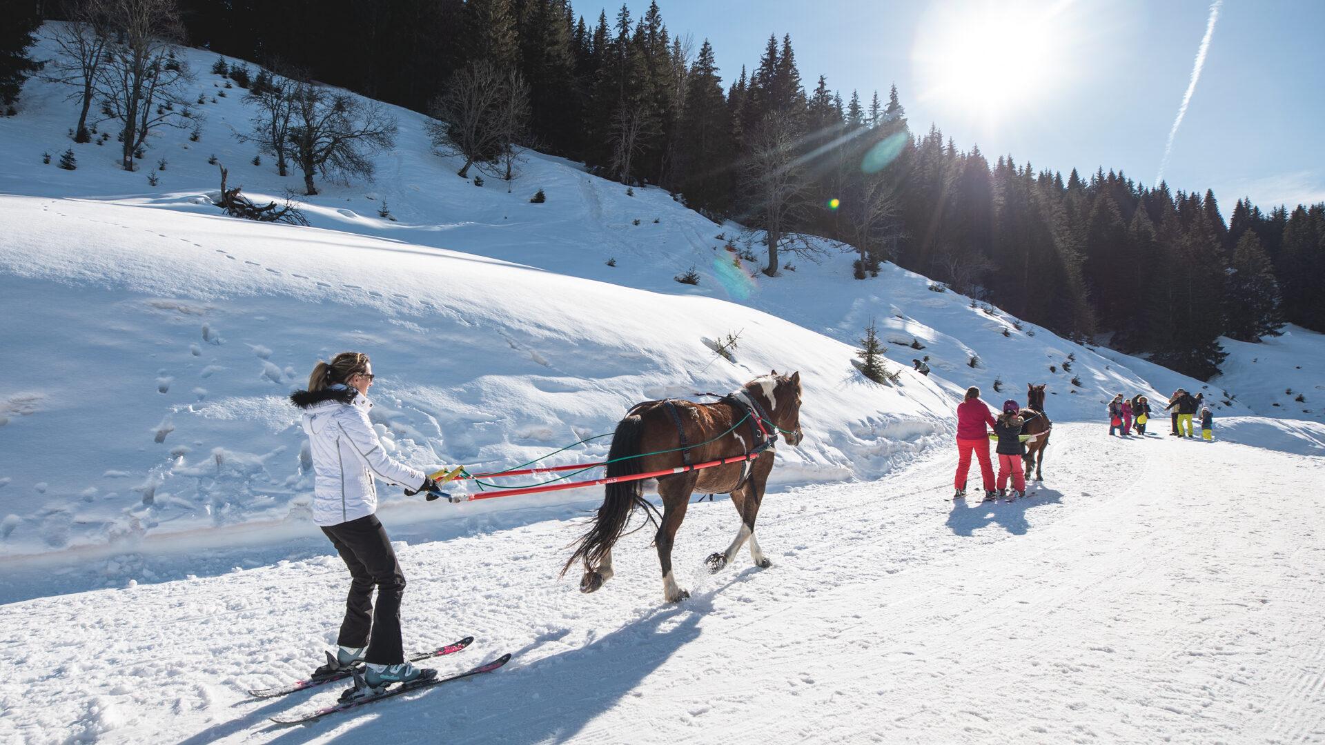 Ski joering Les gets